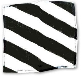 ZEBRA SILK – BLACK AND WHITE 09″