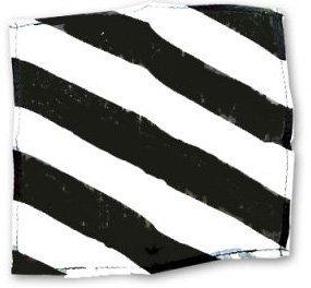 ZEBRA SILK  – BLACK AND WHITE 21″