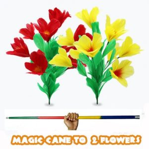 MAGIC CANE TO FLOWERS