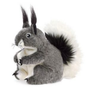 PUPPET ABERT'S SQUIRREL