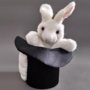 RABBIT IN HAT – TORA