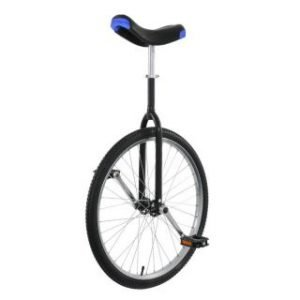 UNICYCLE – 24″