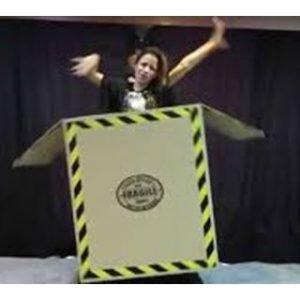 FLYING BOX ILLUSION