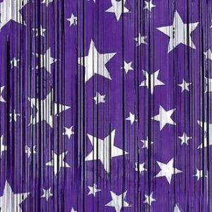BACKDROP – PURPLE WITH SILVER STARS