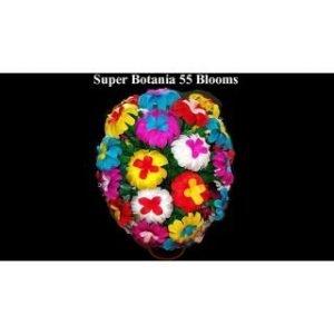 SUPER BOTANIA 55 BLOOMS