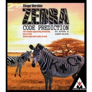 ZEBRA CODE PREDICTION – STAGE VERSION